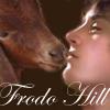 frodo hill