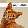 Angelina Ballerina: What? - Huh?