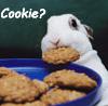 brendalu: cookie