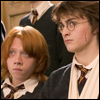 HP - Ron and Harry