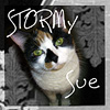 stormy_sue userpic