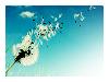 pretty_fiction userpic