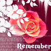 Rose Remember