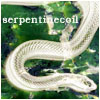 serpentinecoil userpic