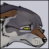 _graywolf_
