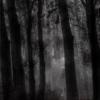 darkllight userpic