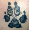 alphawolf13 userpic