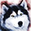 Jana [userpic]