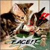 samurai_qwert userpic