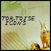 Tortoise Icons