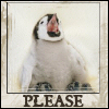Please Penguin