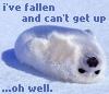 cute - seal - lazy