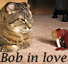 Girlfriend Resplendent Valentine: bobcat love