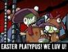 Easter platypus