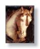 whitehorsedown userpic