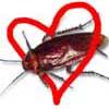 cockroachofluv userpic