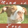 Mina - love