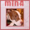 Mina - pink