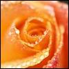 amateur_me userpic