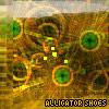 alligatorshoes