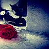 rinoakku userpic