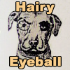 224215152: Hairy Eyeball