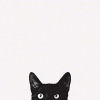 sleepy_kitty userpic