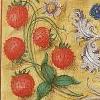 Althea the Coppertop: Illuminated Strawberry Icon-Semyaza