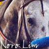 Noro Lim