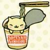 Cat in noodles
