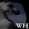wildhorseszine userpic