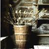 driedflowers51