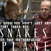 Snakes! On a Plane!