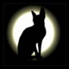 marbled_cat_eng userpic