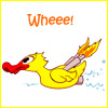 Laurie odell: wheeduck