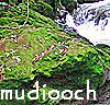 mudiooch userpic