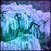 Ree: Pastel Tree