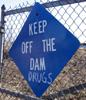 dam drugs