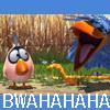 scrubschick: birds-BWAHAHAHA