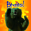 Ursula Messerschmitt: Bear-BRAINS