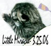 Little Miracle 3.25.06