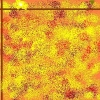 vannorden userpic