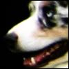 bailup userpic