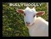 bullywoolly userpic