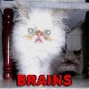 Brains!