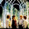 LotR: hobbits