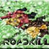 Quiet_Youkai: roadkill
