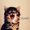 Maire: Snarf