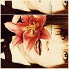 mishkuu userpic