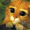 Look at me...)